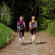 Trening Nordic-Walking. Cztery Pory Roku z Kijami