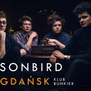 Sonbird w Bunkrze (22.11)