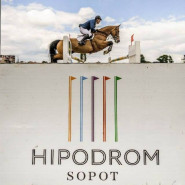 Halowe Zawody Regionalne w Skokach przez przeszkody JumpOFF I