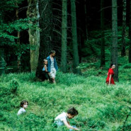 Kino Konesera: Wilkołak