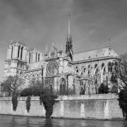 Dla Katedry - koncert solidarności z katedrą Notre Dame