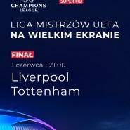 Finał Ligi Mistrzów UEFA