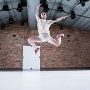 Polska Platforma Tańca w Teatrze Szekspirowskim