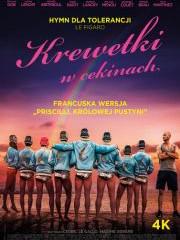 Kino Konesera - Krewetki w cekinach
