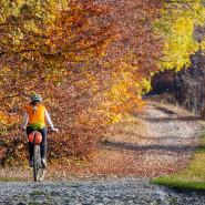 Wycieczka rowerowa wśród dworów i pałaców Kociewia
