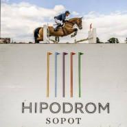 Halowe Zawody Regionalne w Skokach przez przeszkody JumpOFF III