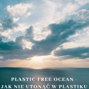 Plastic Free Ocean  warsztat