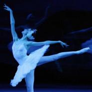 Balet Bolszoj: Jezioro Łabędzie
