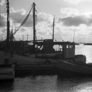 Oprowadzanie po wystawie Gdynia - dzieło otwarte