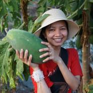 Szkoła Tajskiego Gotowania: Domowa Kuchnia Tajska