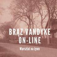 Brąz Vandyke - warsztat on line