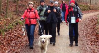 Wędrówki / marsze / spacery / treningi nordic walk