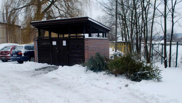 Spółdzielnie mieszkaniowe wytyczają specjalne miejsca, w których można składować choinki.