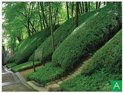 Teren zielony na zboczu w Les Jardins De L'imaginaire w miejscowości Terrasson - w środkowej Francji