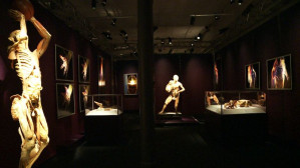 Wystawa w Garnizonie Kultury czynna będzie od 2 maja do 31 sierpnia. Bilety w cenie 35-50 zł w dni powszednie oraz 40-60 zł w weekendy.