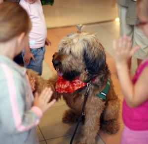 Dla dzieci bardzo ważny jest sam kontakt z psem, któremu mogą zaufać, ale też poczucie sprawczości, które osiągamy poprzez różne ćwiczenia z wydawaniem komend.