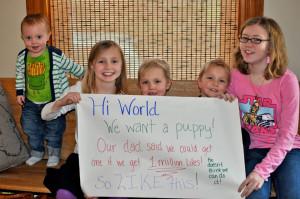 A zaczęło się od dziewczynek proszących o szczeniaka...