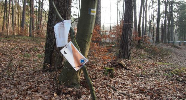 Przedstawiciele stowarzyszenia tłumaczą, że wiszące od kilku miesięcy lampiony służą im do ćwiczeń i rekrutacji nowych członków, a ich pozostawianie na drzewach pozwala zaoszczędzić czas i pieniądze.