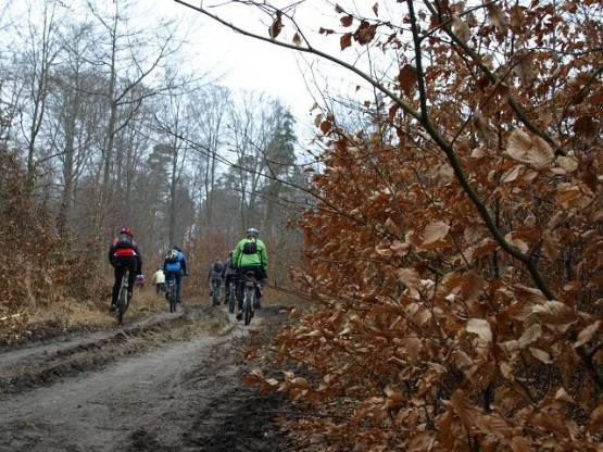 Migawki z wycieczki rowerowej szlakiem jezior i mokradeł wokół Trójmiasta, zorganizowanej przez GR3miasto