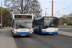 W Gdyni jednocześnie na ulice wyjeżdża do 74 trolejbusów. Nz. od lewej: trolejbus powstały z przebudowanego w 2006 Mercedesa O405NE (wyprodukowanego w 1993 r.) oraz Solaris Trollino 12AC z 2006 r.