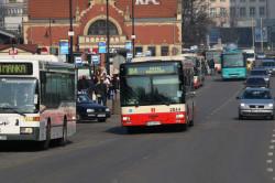 Zdobycie prawa jazdy kategorii D pozwala na kierowanie autobusami różnych przewoźników. Duża liczba kierowców sprawia jednak, że trudno o znalezienie pracy.