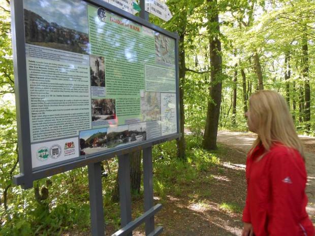 Migawki z wędrówki po Trójmiejskim Parku Krajobrazowym, której celem było odnalezienie głazu narzutowego - Kamiennej Twarzy.