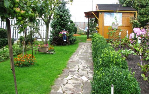 Ceny działek w Trójmieście dochodzą niemal do 200 tys. zł. Najdroższe ogródki znajdziemy na Stogach.