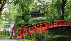Mostek na wyspę pojawi się dopiero w kolejnym etapie zagospodarowania terenów Parku Oliwskiego.
