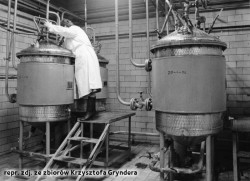 W czasach PRL-u najwięcej piwa, bo 498 tys. hl piwa, wyprodukowano w 1977 r.