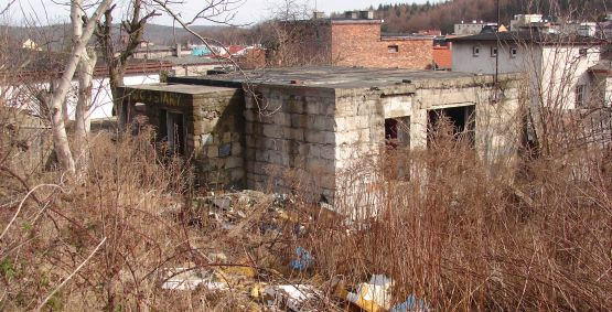 Pośród zadbanych jednorodzinnych domów w Małym Kacku stoi zdewastowana i zaśmiecona rudera. Właścicielem działki jest... Urząd Miasta.
