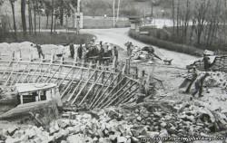 Tak wyglądała budowa basenu dla fok...