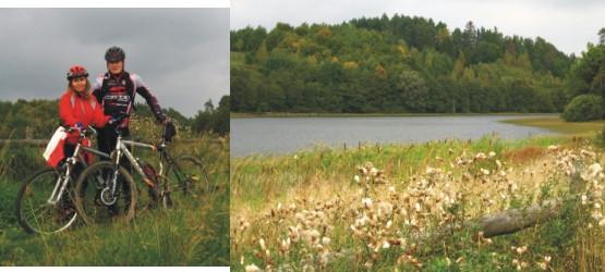 Nad jeziorem Połęczyńskim szlak wiedzie bardzo malowniczą trasą