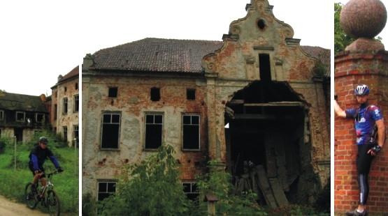 Ruiny pałacu w Januszewie