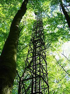 Entuzjaści pozostawienia wieży podkreślają, że lepiej postawić tabliczkę, ostrzegającą przed rzekomym niebezpieczeństwem, niż burzyć całą wieżę.