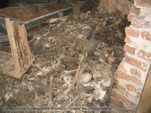 Odnalezione szczątki osób, które w marcu 1945 zginęły w kościele św. Józefa.