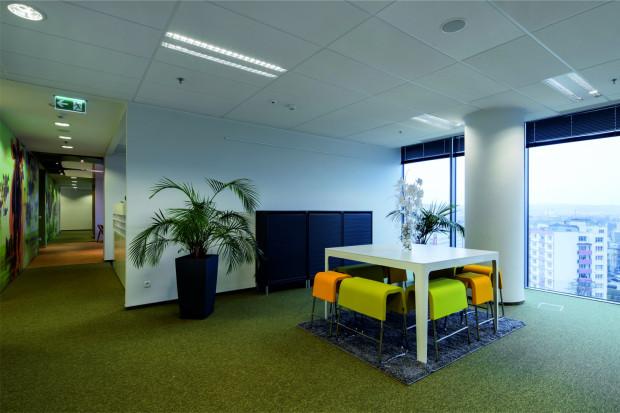 Oprócz walorów estetycznych, rośliny doniczkowe mają zdolność niwelowania oddziaływanie związków toksycznych emitowanych przez sprzęt biurowy.