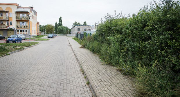 Zdaniem mieszkańców, zieleń jest uporządkowana tylko w miejscach nowych budynków TBS-ów.