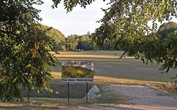Jeden z projektów ogólnomiejskich zakłada rewitalizację Sopockich Błoni.