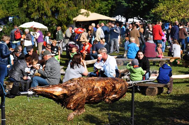 Dary Ziemi to nie tylko wielki targ, ale również rodzinny piknik.