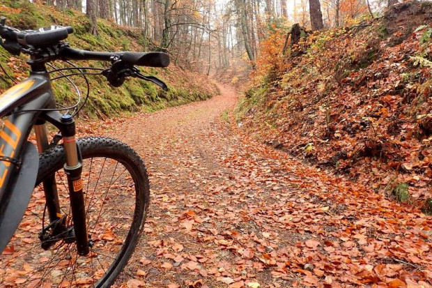 Wypad rowerowy, bądź pieszy w te rejony może być świetnym treningiem przed górami
