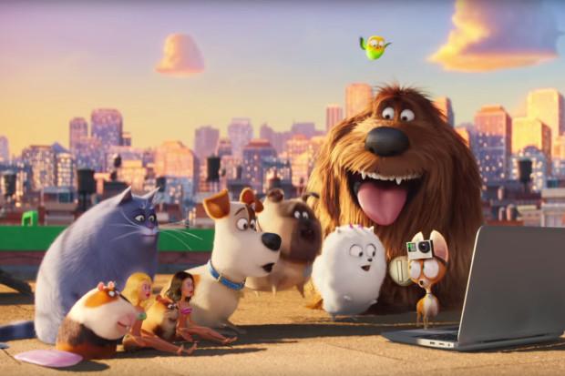 """Jest co oglądać w trójmiejskich kinach. Na najmłodszych widzów czekają przebojowe animacje jak """"Sekretne życie zwierzaków domowych"""" czy """"Vaiana: Skarb Oceanu"""". Nie brakuje propozycji dla nieco starszych dzieci, jak """"Kubo i dwie struny"""". Znajdzie się też coś dla młodzieży i całych rodzin."""