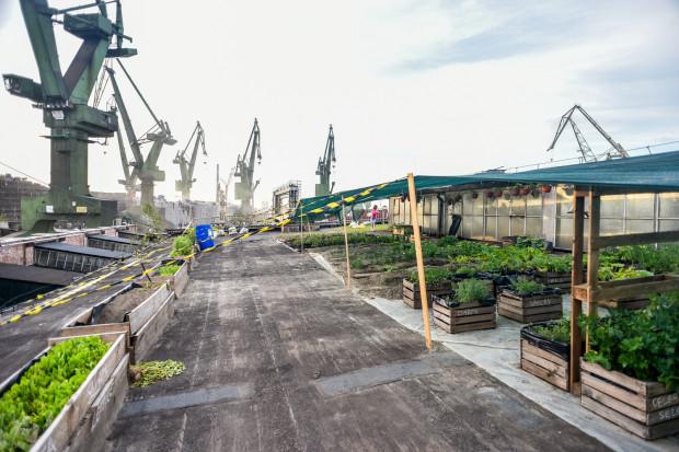 Farma w stoczni, czyli unikatowy projekt restauracji Metamorfoza.