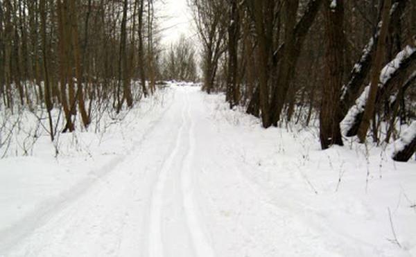 Narciarstwo biegowe pozwala poznać okolicę z nowej perspektywy.