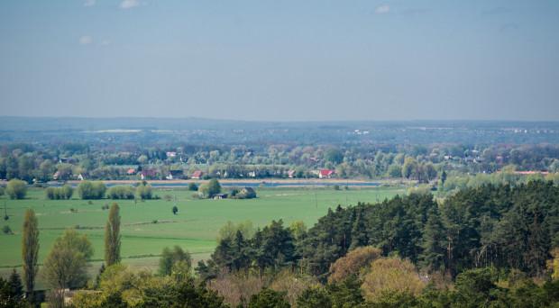 Na ponad 200 ha pól i pastwisk Wyspy Sobieszewskiej jeszcze w tym roku powstanie trawnik.