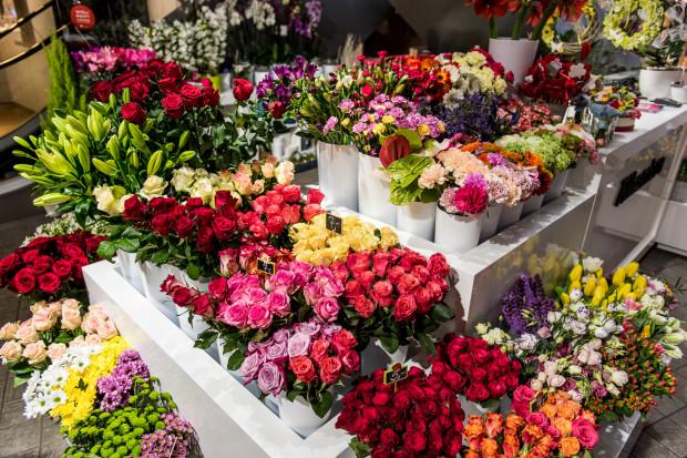Klasyczne czerwone róże, czy może oryginalne i modne flower boksy? Bukiet z kwiatków jednorodnych czy mieszanych? Z bogatym przybraniem, a może w folii celofanowej? Propozycji jest mnóstwo, a że kobiety bywają wybredne, wybór odpowiedniego podarunku warto dobrze przemyśleć.