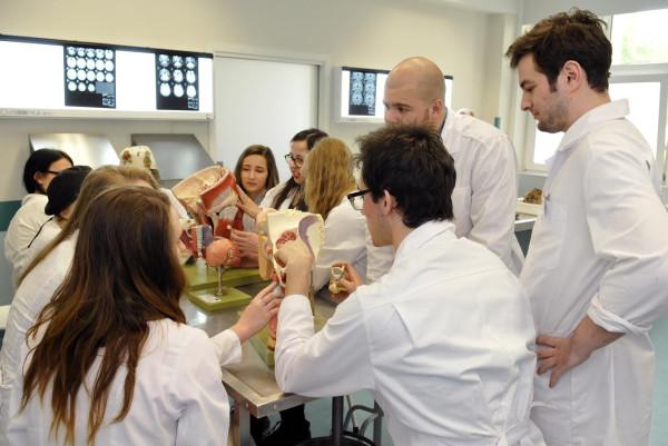 Na Gdańskim Uniwersytecie Medycznym kształci się ponad 800 obcokrajowców. Najliczniejszą grupę stanowią Szwedzi.