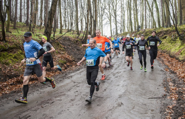 Witomińskie lasy to atrakcyjne miejsce dla miłośników biegów i marszów. W sobotniej imprezie weźmie udział 500 osób. Wolne miejsca na start wyprzedano przed czasem. Impreza ma szczytny cel - wspomoże schronisko dla zwierząt.