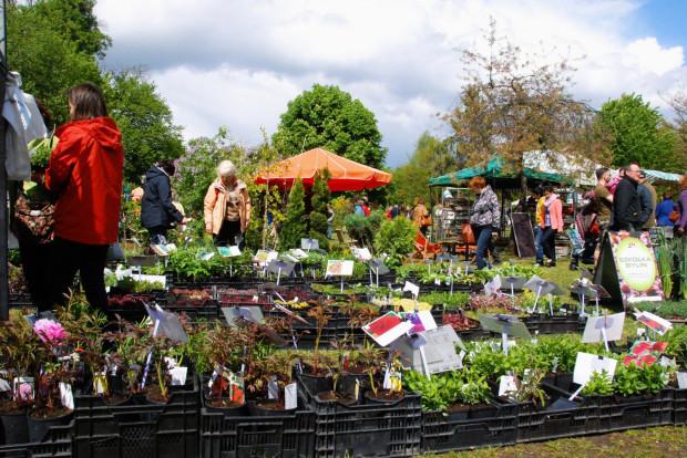 Targi dla miłośników ogrodów odbędą się na Kolibkach.