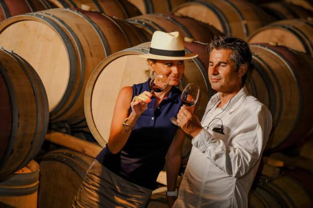 Zorganizowane wycieczki do winnic obejmują zazwyczaj przejazd, wyżywienie, zakwaterowanie oraz wizyty w winiarniach wraz z degustacją win.