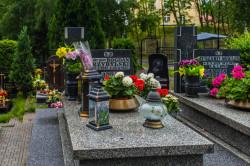 Anna Przybylska pochowana jest w grobie rodzinnym na cmentarzu na Oksywiu.